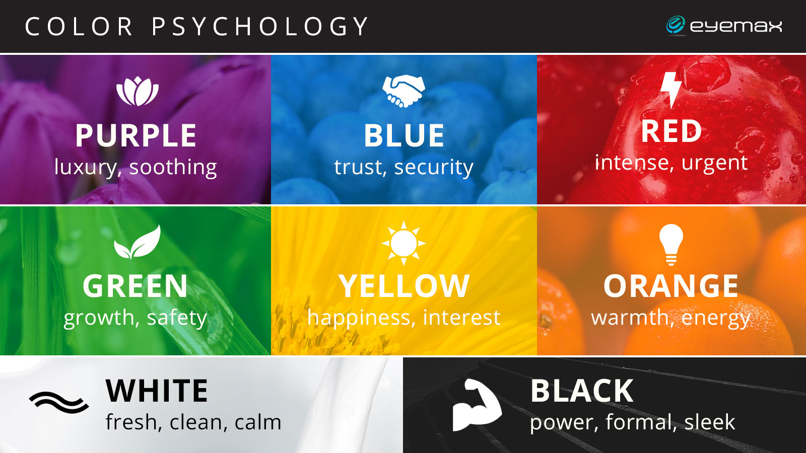 how to choose brand colors
